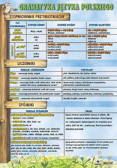 język polski gramatyka ćwiczenia