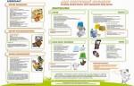 Jak sortować odpady? - Recykling dla szkoły podstawowej