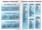 Język polski - literatura W