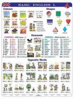 2w1 - Język angielski - Basic English I